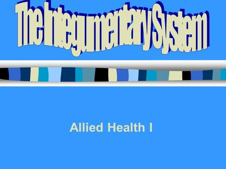 Allied Health I. INTEGUMENTARY SYSTEM Skin = Integument = Cutaneous Membrane 7 Functions: –1.Protective covering –2.Regulates body temperature –3.Manufactures.