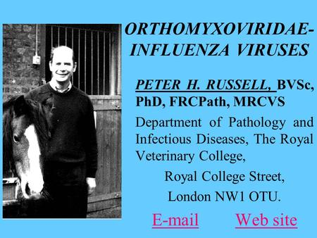 ORTHOMYXOVIRIDAE- INFLUENZA VIRUSES PETER H. RUSSELL, BVSc, PhD, FRCPath, MRCVS Department of Pathology and Infectious Diseases, The Royal Veterinary College,
