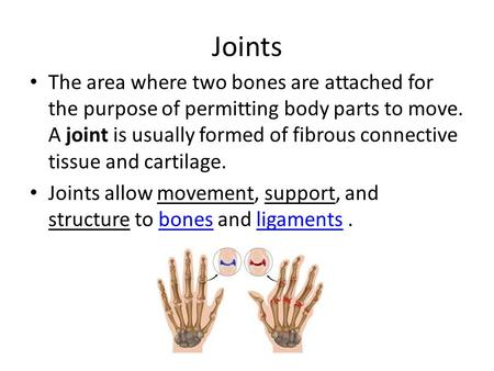 Joints The area where two bones are attached for the purpose of permitting body parts to move. A joint is usually formed of fibrous connective tissue and.
