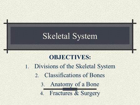 Skeletal System OBJECTIVES: 1. Divisions of the Skeletal System 2. Classifications of Bones 3. Anatomy of a Bone 4. Fractures & Surgery.