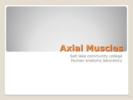 Axial Muscles Salt lake community college Human anatomy laboratory 11-1.
