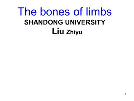 1 The bones of limbs SHANDONG UNIVERSITY Liu Zhiyu.