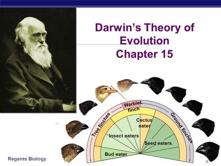 Darwin's Theory of Evolution Chapter 15