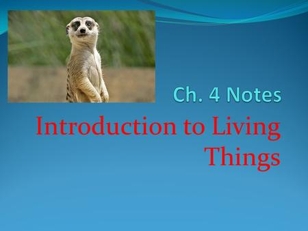 Introduction to Living Things. Taxonomy The scientific study of how living things are classified.