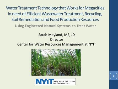Water Treatment Technology that Works for Megacities in need of Efficient Wastewater Treatment, Recycling, Soil Remediation and Food Production Resources.