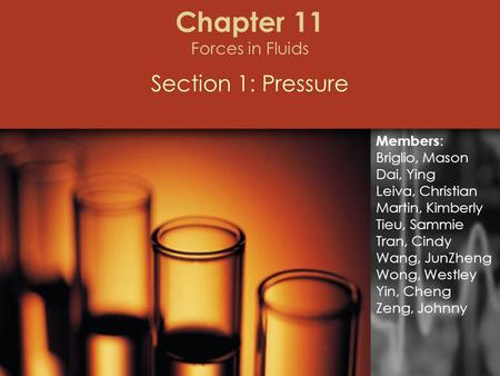 Chapter 11 Forces in Fluids Section 1: Pressure Members : Briglio, Mason Dai, Ying Leiva, Christian Martin, Kimberly Tieu, Sammie Tran, Cindy Wang, JunZheng.