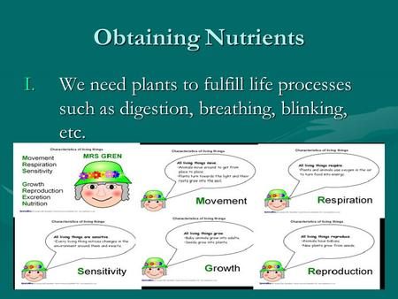 Obtaining Nutrients I.We need plants to fulfill life processes such as digestion, breathing, blinking, etc.
