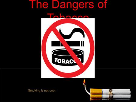 The Dangers of Tobacco. What is Tobacco? Tobacco is a plant that contains nicotine. Its leaves are dried and then made into cigarettes, cigars, smokeless.