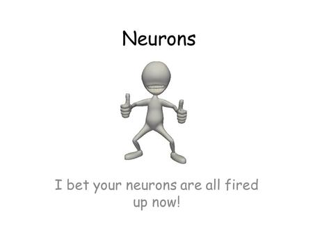 Neurons I bet your neurons are all fired up now!.
