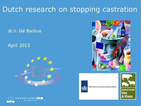 Dutch research on stopping castration dr.ir. Gé Backus April 2013.