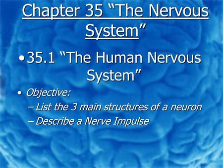 "Chapter 35 ""The Nervous System"" 35.1 ""The Human Nervous System""35.1 ""The Human Nervous System"" Objective:Objective: –List the 3 main structures of a neuron."