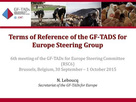 6th West Eurasia Roadmap Meeting Almaty, Kazakhstan 28-30 April 2015 1 Terms of Reference of the GF-TADS for Europe Steering Group 6th meeting of the GF-TADs.