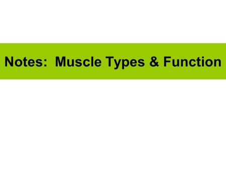 Notes: Muscle Types & Function. (1) Types of Muscle Skeletal Cardiac Smooth.