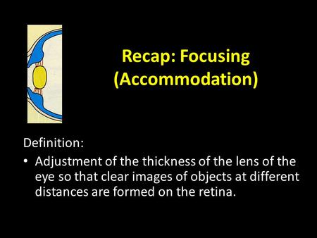 Recap: Focusing (Accommodation) Definition: Adjustment of the thickness of the lens of the eye so that clear images of objects at different distances.