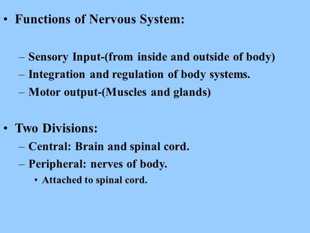 Functions of Nervous System: –Sensory Input-(from inside and outside of body) –Integration and regulation of body systems. –Motor output-(Muscles and glands)
