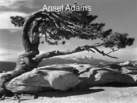 Ansel Adams By: Cristina Barnhardt. History of Ansel Adams Ansel Adams was a visionary figure in nature photography and wilderness preservation. He is.