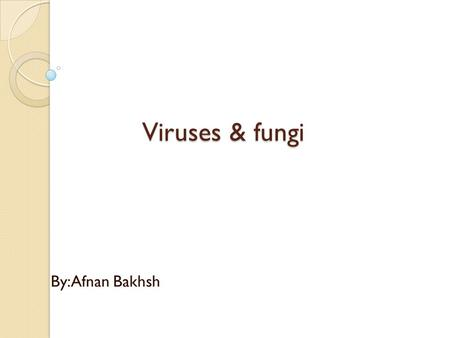 Viruses & <strong>fungi</strong> By:Afnan Bakhsh. <strong>Fungi</strong>: : Mycology: study of <strong>fungi</strong>. <strong>Fungi</strong>: group of heterotrophic eukaryotic cells. <strong>Fungi</strong> called saprophytes because they.