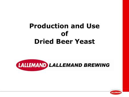Production and Use of Dried Beer Yeast