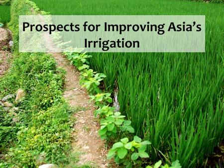 Prospects for Improving Asia's Irrigation.  The Problem  Agricultural Irrigation Solutions  Other Irrigation Solutions  Conclusion Prospects for Improving.