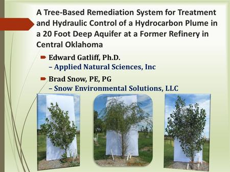 A Tree-Based Remediation System for Treatment and Hydraulic Control of a Hydrocarbon Plume in a 20 Foot Deep Aquifer at a Former Refinery in Central Oklahoma.