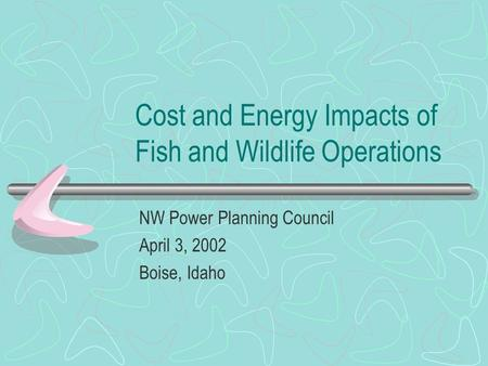 Cost and Energy Impacts of Fish and Wildlife Operations NW Power Planning Council April 3, 2002 Boise, Idaho.