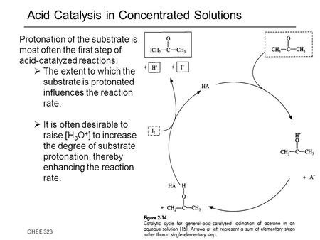 CHEE 323J.S. Parent1 Acid Catalysis in Concentrated Solutions Protonation of the substrate is most often the first step of acid-catalyzed reactions. 