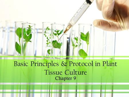Basic Principles & Protocol in Plant Tissue Culture