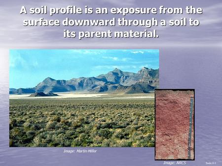 A soil profile is an exposure from the surface downward through a soil to its parent material. Soils-3-1 Image: NRCS Image: Martin Miller.