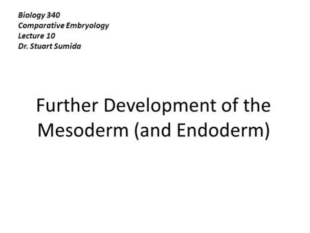 Further Development of the Mesoderm (and Endoderm)