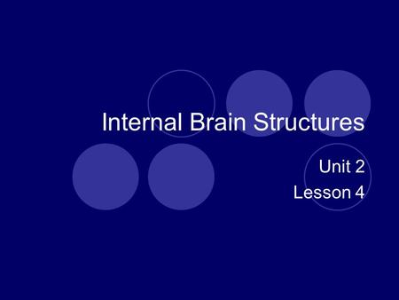 Internal Brain Structures Unit 2 Lesson 4. Objectives Identify organization, function, and location of major brain structures. Explain how damage would.