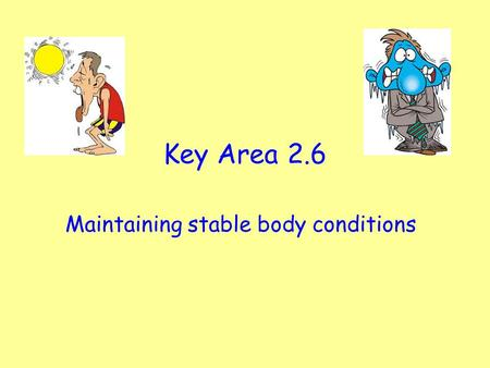 Key Area 2.6 Maintaining stable body conditions. Starter Activity: 2 Minutes thinking time. Discuss with your partner, what do you know about the nervous.