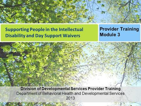 Supporting People in the Intellectual Disability and Day Support Waivers Division of Developmental Services Provider Training Department of Behavioral.