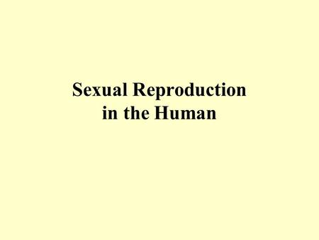 Sexual Reproduction in the Human. Depth of treatment (1/2) General structure of the reproductive system – male and female Functions of the main parts.