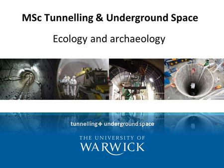Tunnelling underground space MSc Tunnelling & Underground Space Ecology and archaeology.