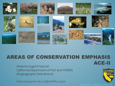 AREAS OF CONSERVATION EMPHASIS ACE-II Photos courtesy of USFWS National Image Library Melanie Gogol-Prokurat California Department of Fish and Wildlife.
