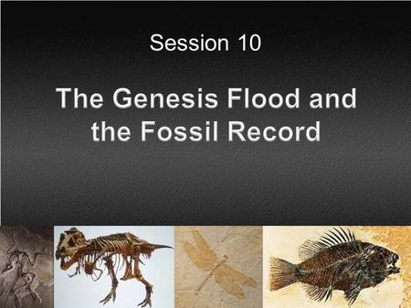Session 10. Session Background The purpose of this session is to demonstrate that the observational scientific evidence supports a worldwide flood.