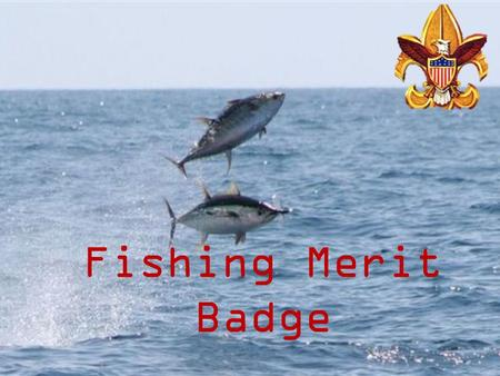 Fishing Merit Badge. Fishing Safety First Aid - Hook Removal.