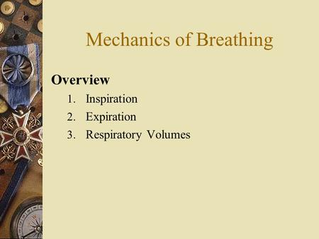 Mechanics of Breathing Overview 1. Inspiration 2. Expiration 3. Respiratory Volumes.