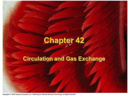 Chapter 42 Circulation and Gas Exchange. Material Exchange The exchange of materials from inside to outside is an important function for organisms. The.