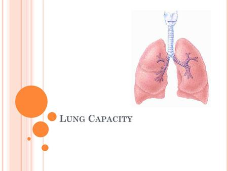 L UNG C APACITY. Under normal conditions, your regular breathing does not use up the full capacity of you lungs. As your body's needs increase, so does.