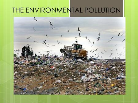 THE ENVIRONMENTAL POLLUTION. There aren't any substances that are polluting for what they are, but it's the way we use them to make them polluting: pollution.