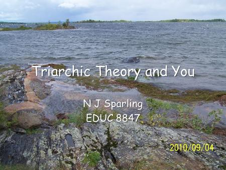 Triarchic Theory and You N J Sparling EDUC 8847.