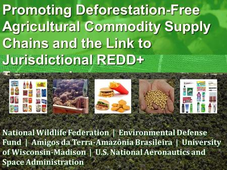 National Wildlife Federation | Environmental Defense Fund | Amigos da Terra-Amazônia Brasileira | University of Wisconsin-Madison | U.S. National Aeronautics.
