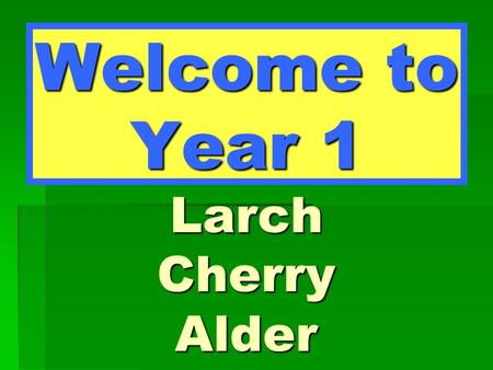 Welcome to Year 1 Larch Cherry Alder. Larch Class Miss Bateman – Class Teacher Mrs Saint – TA.