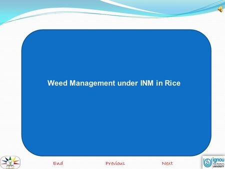Weed Management under INM in Rice EndPreviousNext.