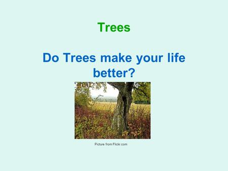 Trees Do Trees make your life better? A Technology Learning Area project for Grade 8 Picture from Flickr.com.