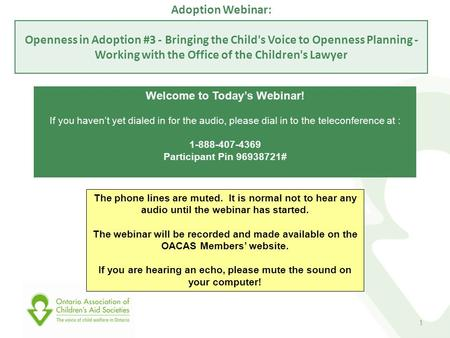 Adoption Webinar: Openness in Adoption #3 - Bringing the Child's Voice to Openness Planning - Working with the Office of the Children's Lawyer Welcome.