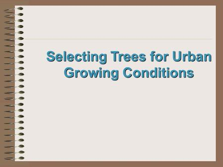 Selecting Trees for Urban Growing Conditions. Next Generation Science / Common Core Standards Addressed! WHST.9 ‐ 12.7 Conduct short as well as more sustained.