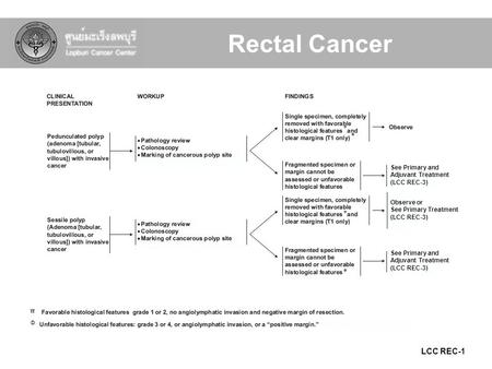 LCC REC-1 Φ π π π Φ Φ See Primary and Adjuvant Treatment (LCC REC-3) Observe or See Primary Treatment (LCC REC-3) Rectal Cancer.