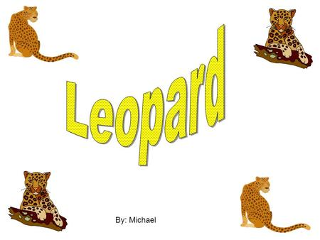 By: Michael. What does the leopard look like The leopards skin has spots all over it accept it's face. The leopards spots are a dot and then it looks.